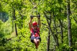 Asheville Zipline Adventure Across Moody Cove