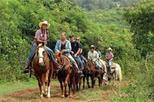 Dominican Republic Countryside Horseback Riding from Puerto Plata