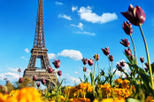 Paris Day Trip from London with Wine Tasting or Visit to Versailles, Paris,