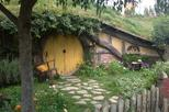 Hobbiton and Waitomo Glowworm Cave Day Tour - Private transportation