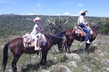 Leisurely Half Day Trail Riding in San Miguel de Allende