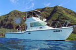 Private Eco-Tour: Snorkeling and Wildlife-Viewing Yacht Cruise from Waianae , Oahu, Private Tours