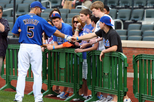 Viator VIP: NY Mets Batting Practice, Field Tour & Premium Game Tickets, New York City, Sporting ...