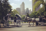 Central Park Date: Horse Carriage Ride with Tavern on the Green Dining Experience