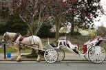 Private Horse and Carriage Ride in Central Park, New York City, Private Tours