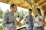 Small-Group Quebec Wine Tour from Montreal with Gourmet Lunch or Cheese Tasting