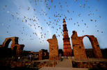 Delhi Private Custom Sightseeing Day Tour