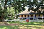 Oak Alley and Laura Plantation Group Tour from New Orleans