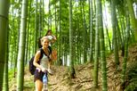 2-Day Private Hiking and Biking Adventure in Moganshan from Shanghai, Shanghai, Multi-day Tours