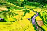 2 days 1 night Private tour Sapa and Ham Rong trekking, day bus from Hanoi