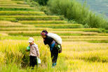 2 days 2 nights Private tour Sapa trekking homestay, train and luxury bus