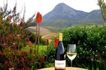 Africa & Mid East - South Africa: Full-Day Hemel-en-Aarde Valley Wine and Whale Coast Private Tour from Cape Town