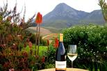 Africa & Mid East - South Africa: Hemel-en-Aarde Valley Wine and Whale Coast Private Tour from Cape Town
