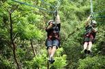 Mombacho Volcano Nature Reserve Hiking and Ziplining Tour, Managua,