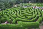 Asia - South Korea: Jeju Kimnyoung Maze Park Discount Ticket