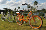 Austin Electric Bike Rental