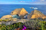 3-Day Best of Port Lincoln and Coffin Bay Private Tour from Adelaide