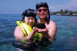 Small-Group Snorkeling Adventure from Kona, Big Island of Hawaii, Scuba & Snorkelling