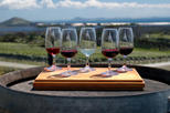Maipú Luxury Wine-Tasting Tour from Mendoza Including Trapiche Winery, Mendoza, Wine Tasting & ...