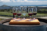 Maip wine tasting tour from mendoza including trapiche winery in mendoza 126495