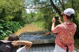 Private Eco Swamp Tour (for up to 6)