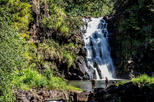 Intimate North Shore Eco-Fun Waterfall from Waikiki