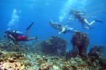 Introduction Scuba Diving Course (SNUBA) with KarmaKazi Tours