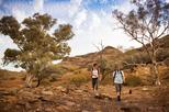 3-Day Small-Group Eco-Tour from Adelaide: Flinders Ranges