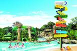 Adventure Cove Waterpark Ticket: Skip-the-Line Admission