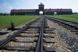 Auschwitz birkenau museum and memorial guided tour from krakow in krak w 188363