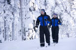 Cross-Country Skiing Trip