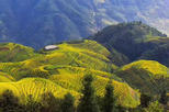 All-inclusive Private Day Tour to Longji Rice Terraces and Village