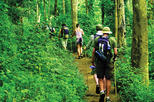 4-Night Hill Tribe Village Tour with Thai Jungle Trek from Chiang Mai, Chiang Mai & Chiang Rai, ...