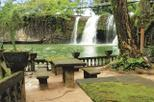 Atherton Tablelands, Paronella Park and Millaa Millaa Waterfall Circuit Eco-Tour