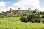 Chianti and castle tour from siena in siena 285278