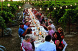 Dinner in the Chianti Vineyards from Florence