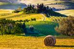 Siena, Montalcino and Val d'Orcia Wine Roads Day-Trip from Florence