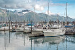 Anchorage Shore Excursion: Pre-Cruise Transfer and Tour from Anchorage to Seward, Anchorage, Port ...
