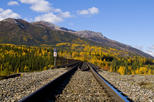 Talkeetna Backcountry Rail & Float with Transport from Anchorage