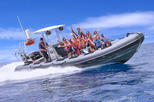 Sculpture Snorkel and Powerboat Sightseeing Tour in Grenada