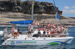 Most Famous Catamaran in Tenerife Island (2 hours and 3 hours tours)