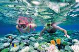 Catalina Island Snorkel Excursion from Punta Cana
