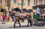 1-Hour Guided Carriage Tour of Charleston's Historic District