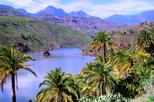 VIP Gran Canaria Shared 9 Hour Guided Group Tour by Bus