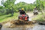 Quad Bike Adventure and Ubud Monkey Forest
