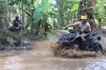 ATV Waterfall Ubud Snorkeling Blue Lagoon Private Tour all included