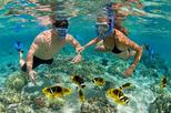 Bali Blue Lagoon Tanjung Jepun Snorkeling including lunch-boat-transport return