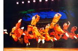 Beijing Private Tour: Shaolin Kung Fu Show and Gourmet Peking Roasted Duck Dinner with Private Transfer