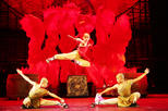 Beijing Private Tour: Shaolin Kung Fu Show and Gourmet Peking Roasted Duck Dinner