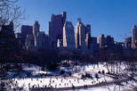 Central Park Ice Skating at Wollman Rink and Dessert at Planet Hollywood